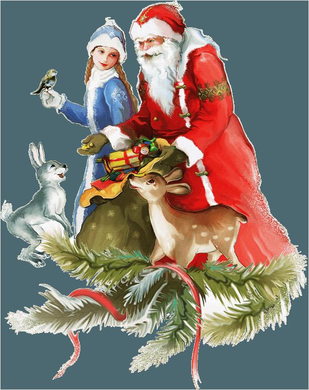 Дед Мороз на дом цена